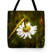 Broken Hearted Oxeye Daisy Asteraceae  Tote Bag