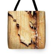 Broken Old Stump Spruce Tote Bag
