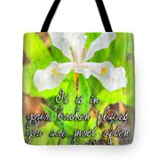 Broken Places Tote Bag