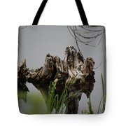 Broken Root Stump In Water  Tote Bag