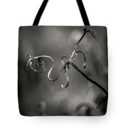 Broken Soul... Tote Bag