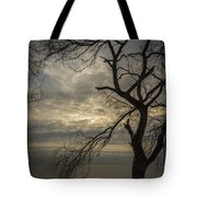 Broken Tree Tote Bag