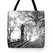Broken Trees Tote Bag