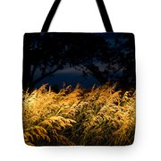 Brome Grass In A Field Near Princeton Tote Bag