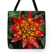Bromeliad Blooming Tote Bag