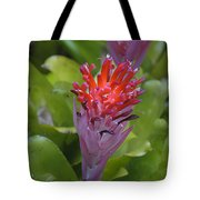 Bromeliad Flower Tote Bag