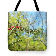 Bromeliad Growing In The Wild Tote Bag