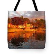 Bronx Beauty Tote Bag