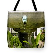 Bronze Civit Head Fountain Tote Bag
