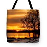 Bronze Winter Dawn Tote Bag
