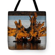 Bronzed Wood Tote Bag