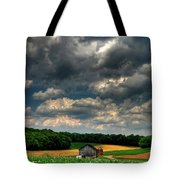 Brooding Sky Tote Bag by Lois Bryan