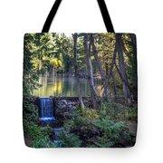 Brook Falls Tote Bag