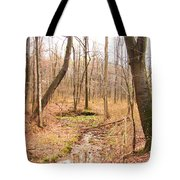 Brook In The Woods Tote Bag