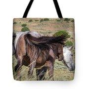 Broomtails Tote Bag