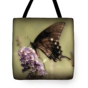 Brown And Beautiful Tote Bag by Sandy Keeton
