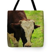 Brown And White Bull On A Farm Tote Bag