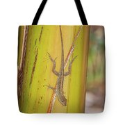 Brown Anole Tote Bag