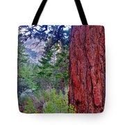 Brown Bark Tote Bag