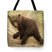 Brown Bear Cub Turns To Look Back Tote Bag