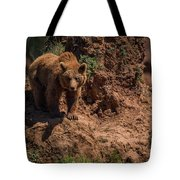 Brown Bear Watches From Steep Rocky Outcrop Tote Bag