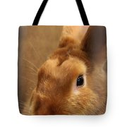 Brown Bunny And Whisker's Closeup Tote Bag
