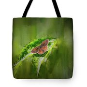 Brown Butterfly #h6 Tote Bag by Leif Sohlman