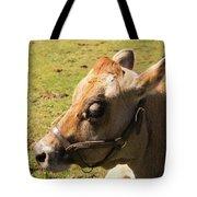 Brown Cow Tote Bag