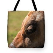 Brown Cow With Vignette Tote Bag