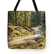 Brown Dirty Road Under Spring Sun Rays Tote Bag