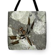 Brown Dragonfly  Tote Bag