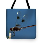Brown Dragonfly Hanging On Tote Bag