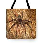 Brown Fishing Spider Tote Bag