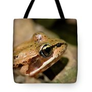 Brown Frog In The Forest - Western Oregon Tote Bag