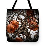 Brown Fruit Abstract Tote Bag
