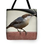 Brown-headed Nuthatch Tote Bag