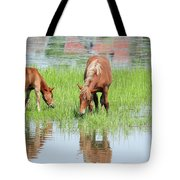 Brown Horse And Foal Nature Spring Scene Tote Bag