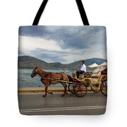 Brown Horse Drawn Carriage Tote Bag