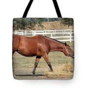 Brown Horse Eating Hay Ranch Scene Tote Bag