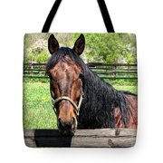 Brown Horse In A Corral Tote Bag