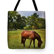 Brown Horse In Holland Tote Bag
