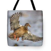 Brown Mallard Landing Tote Bag