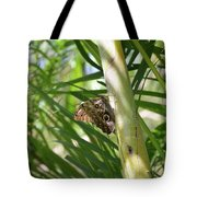 Brown Morpho Butterfly Resting On A Sunny Tree  Tote Bag