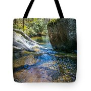Brown Mountain Forest Tote Bag