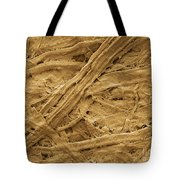 Brown Paper Towel Tote Bag