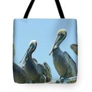 Brown Pelican 4 Tote Bag