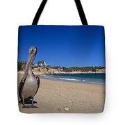 Brown Pelican At The Baja Tote Bag