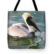 Brown Pelican In The Bay Tote Bag