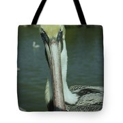Brown Pelican Up Close Tote Bag