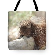 Brown Porcupine On A Fallen Log Tote Bag
